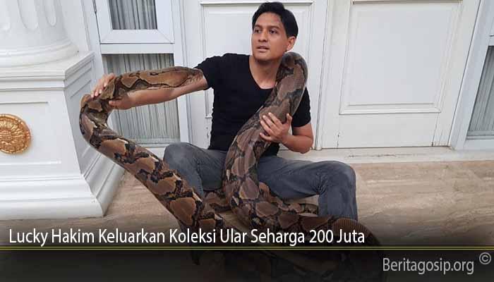 Lucky Hakim Keluarkan Koleksi Ular Seharga 200 Juta